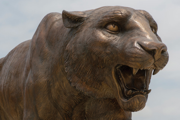 Tiger statue on campus