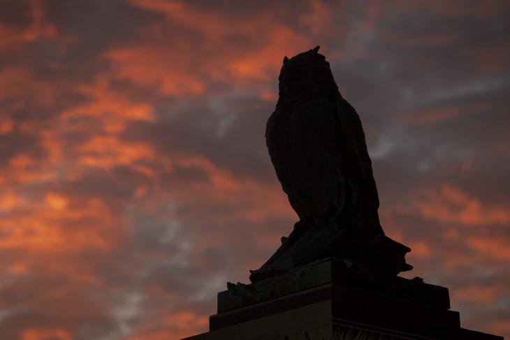 Sceritt Owl statue against a blue and orange sunset sky