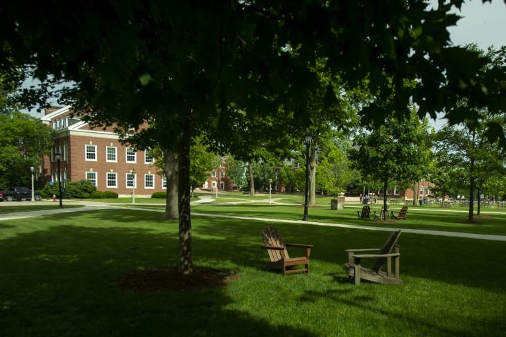 Leafy and shadowy campus shot