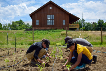 Students working on the campus farm at the Ullem Center for Sustainability