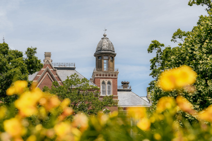 Yellow flowers in the foreground, East College in the back