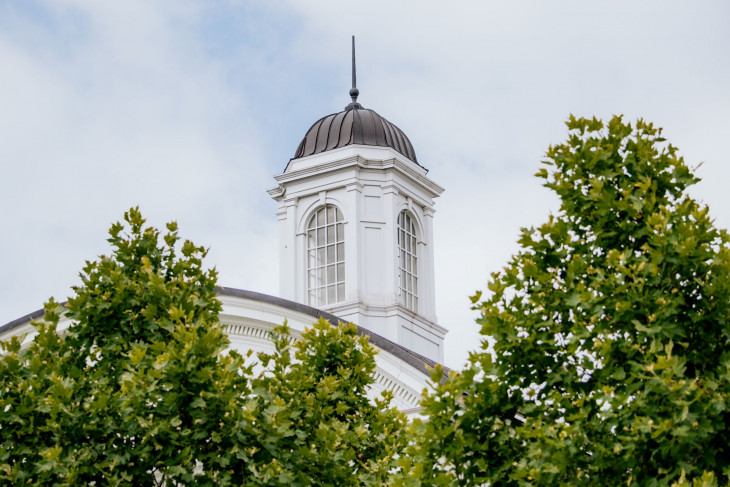 Clock tower visible behind trees