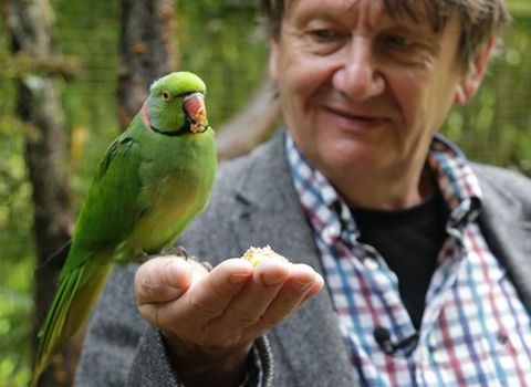 Carl Jones showing off a bird on his hand