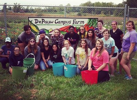 Students at the DePauw Campus Farm