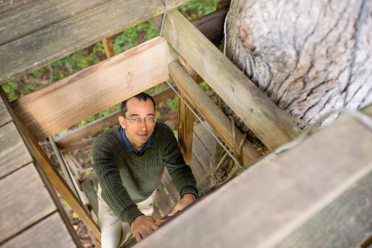 Jacob Hale climbs the ladder to the treehouse from which he teaches.