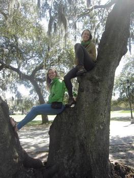 Jacquelyn in a tree in Savannah, GA