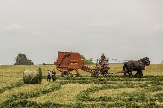 Farming with machinery and horses in a traditional rural community.