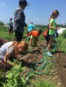 Campers get some farming experience at DePauw's Campus Farm