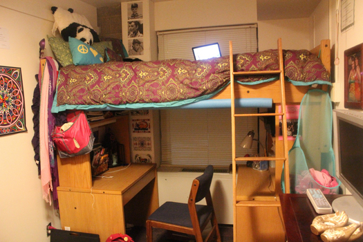 A single in Hogate with a lofted bed.