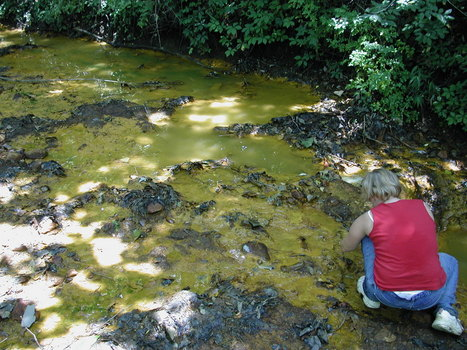 Student collecting acid-mine drainage water samples from the Green Valley Coal Mine near Terre Haute, IN.