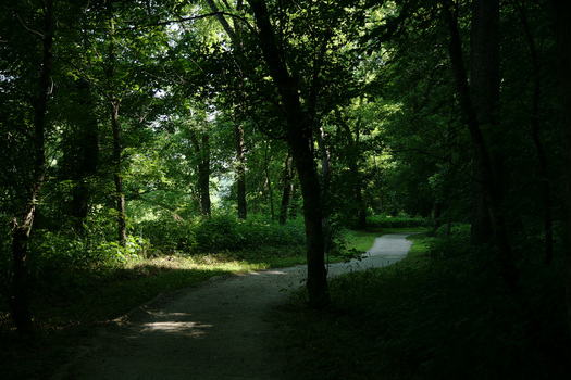 Nature Park trail -- Photography by Cynthia O'Dell