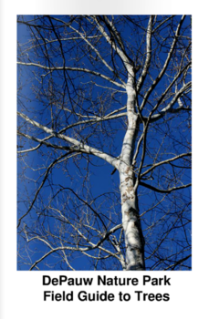 Nature park tree identification brochure cover