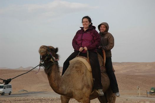 Riding Camels in the Judean Desert