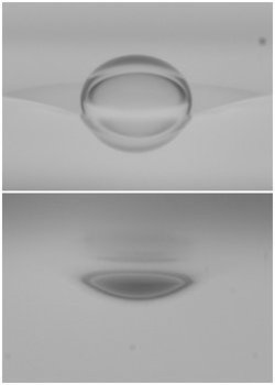 Skirting Drop, Above and Below View