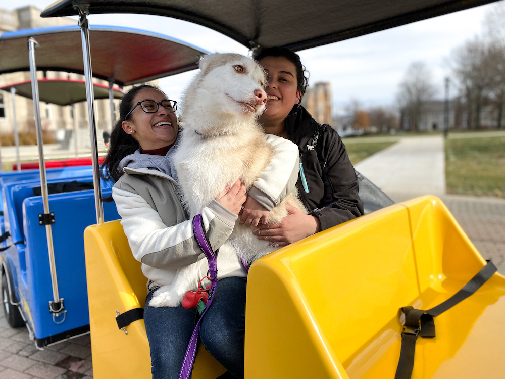 Dog and students ride train