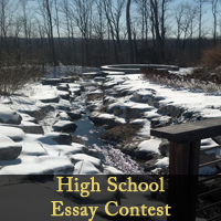 High school essay contests for money