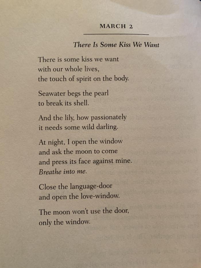 Daily Rumi