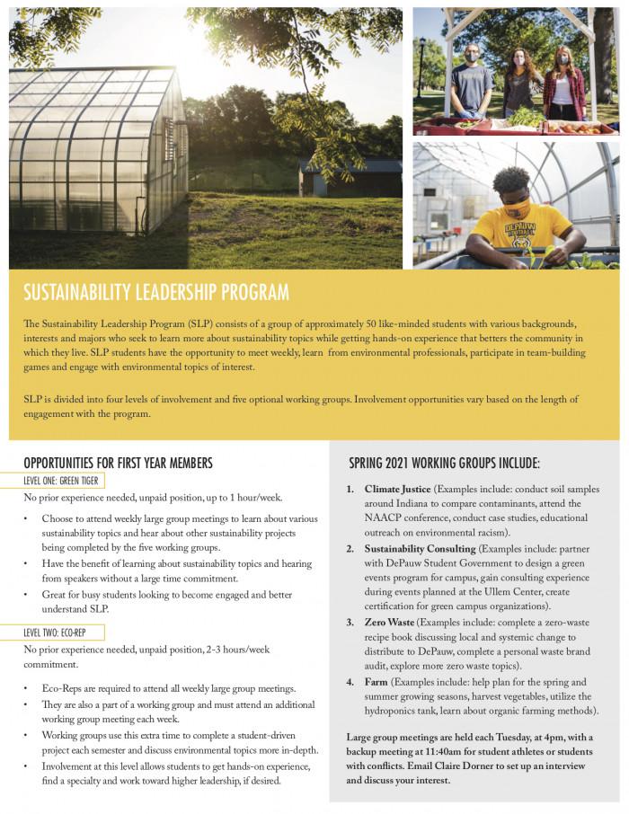Sustainability Leadership Program brochure page 1