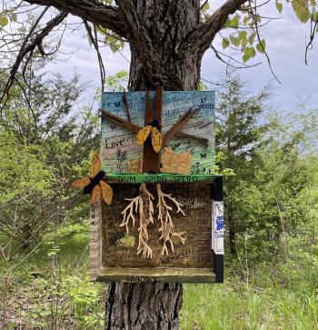 crafted shadow box of tree, cicadas and roots