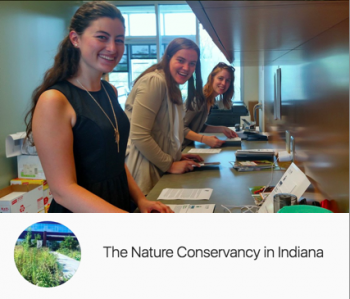 Regan working at the Nature Conservancy