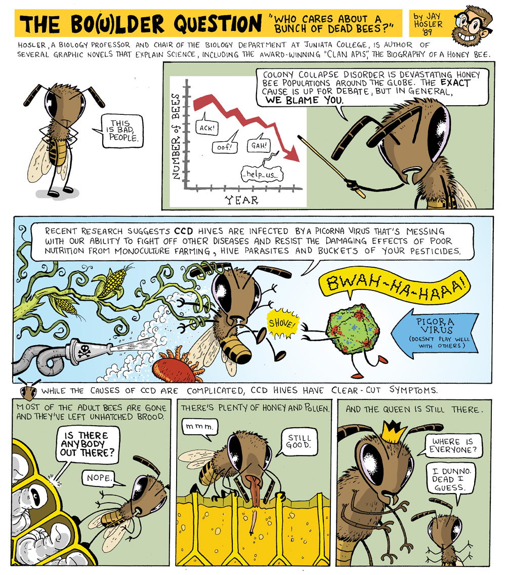 Page 1 of Jay Hosler's bee comic