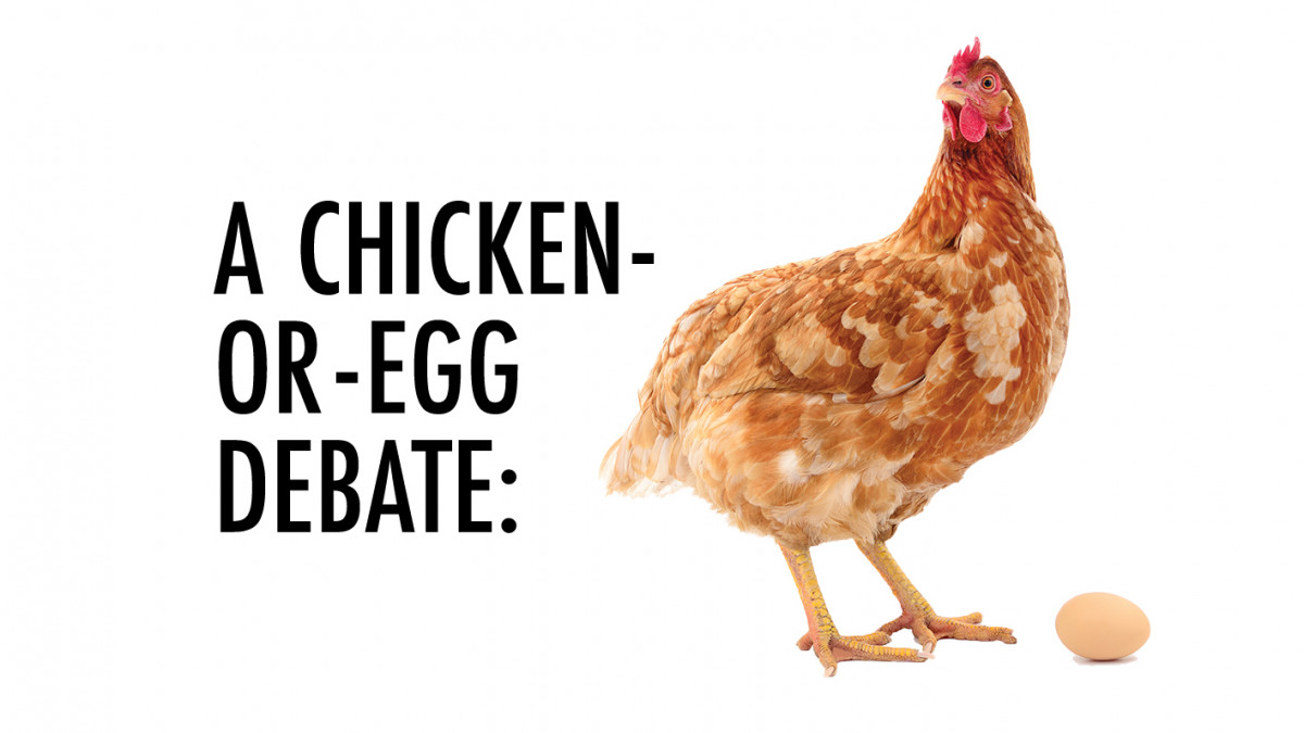 A CHICKEN-OR-EGG DEBATE: Does DePauw attract socially aware students, or does it awaken them?